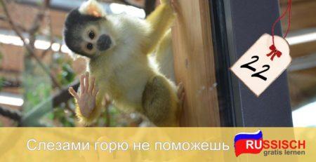 Sammlung - Russische Fragewörter